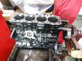 DSCN1295